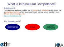 Definition Of ICIntercultural