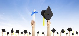 Higher education sector