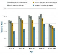 Figure 1.18a: Adult Obesity Rates by Age and Education Level, 2008
