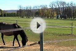 The Hillard Horse Farm for Sale Near State College, PA